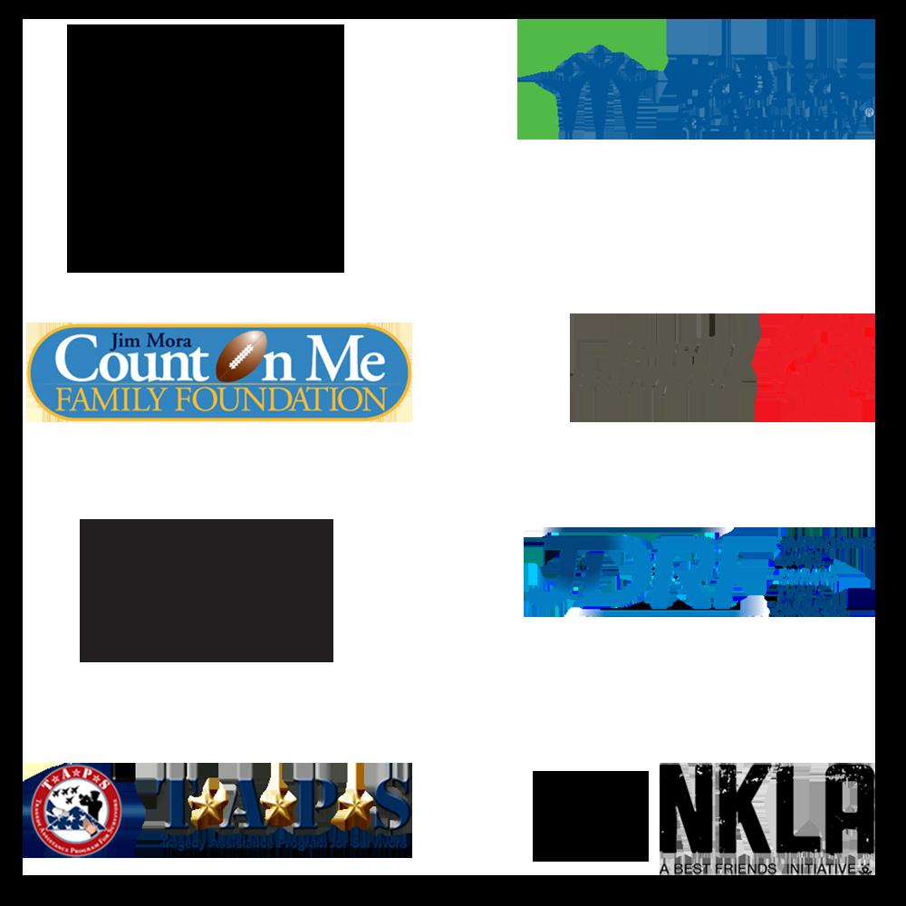 Sponsorship / Philanthropy Efforts